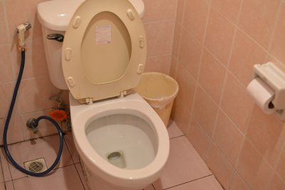ブログ用トイレ0.jpg