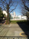 大塚中学.jpg