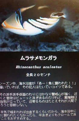 20100812eki2.jpg