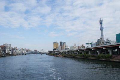 20110112hon6.jpg