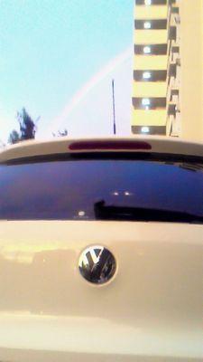 20110330hon1.jpg