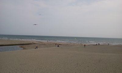 20110517honbu3.jpg