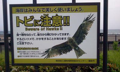 20110517honbu5.jpg