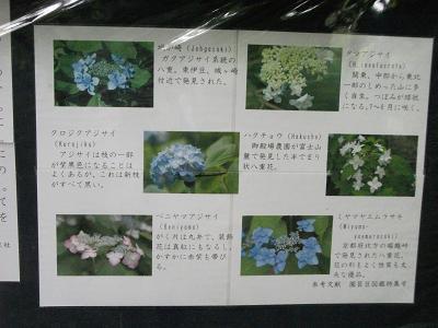 20110523eki10.jpg